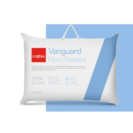 Almohada-Vanguard-New-50-x-70-cm---1-4983